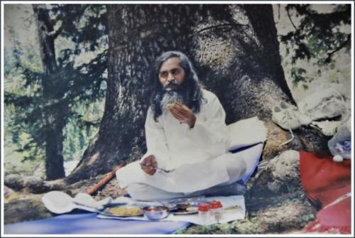 Samdarshi Manali2